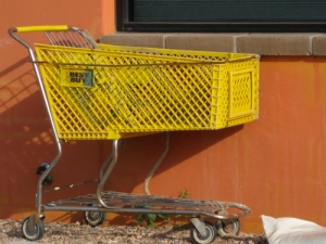 Best Buy cart on river walk, miles from any Best Buy/Ryn Gargulinski