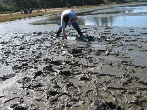 Oregon marsh mud/Photo Ryn Gargulinski