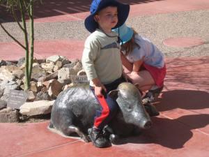 Kid on javelina at Arizona-Sonora Desert Museum/Ryn Gargulinski