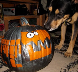 Phoebe refrained from eating the pumpkins. Good girl./Art and photo Ryn Gargulinski