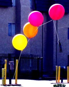 Balloons in Tucson/Ryn Gargulinski
