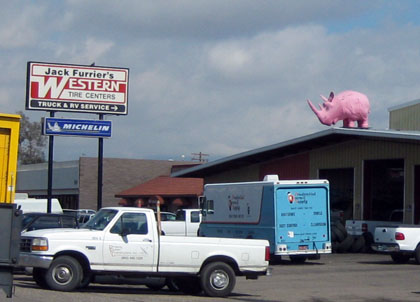 Overview pink rhino/Ryn Gargulinski