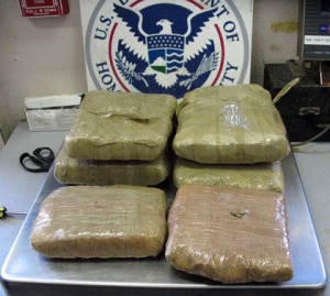 Thankfully we only got pix of the pot and not the strip search/Border Patrol photo