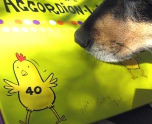 Phoebe hunting the musical chicken card/Ryn Gargulinski