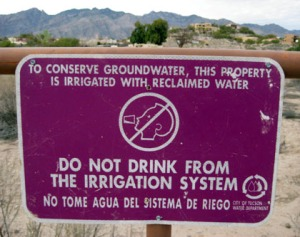 Waste water is proposed for fake snow on San Francisco Peaks/Ryn Gargulinski