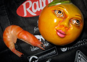 Produce, shrimp, meats pose dangers in reusable shopping bags/Ryn Gargulinski